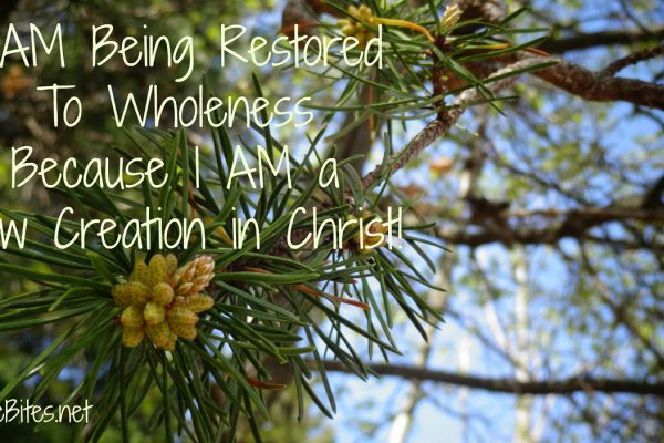 8-A-Being Restored To Wholeness Because I AM a New Creation in Christ!